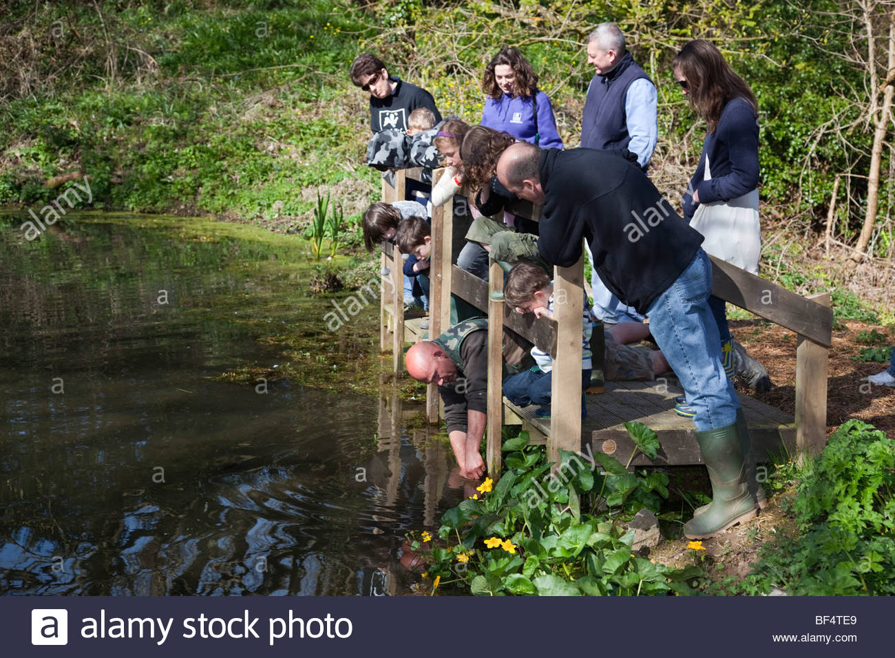 August: Pond Dipping, Dray House