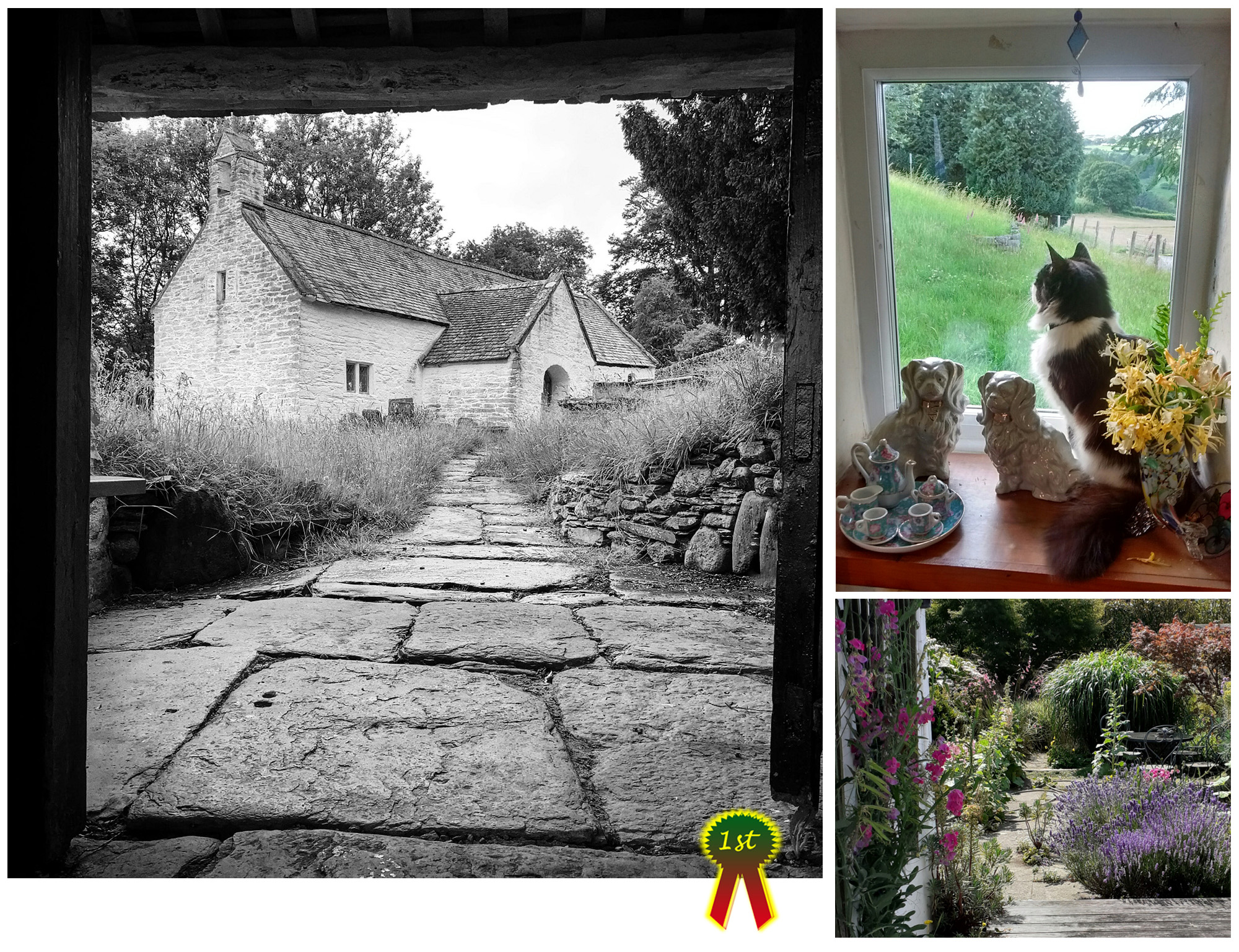 Week 14 Photocomp winners