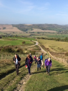 2019 South Downs
