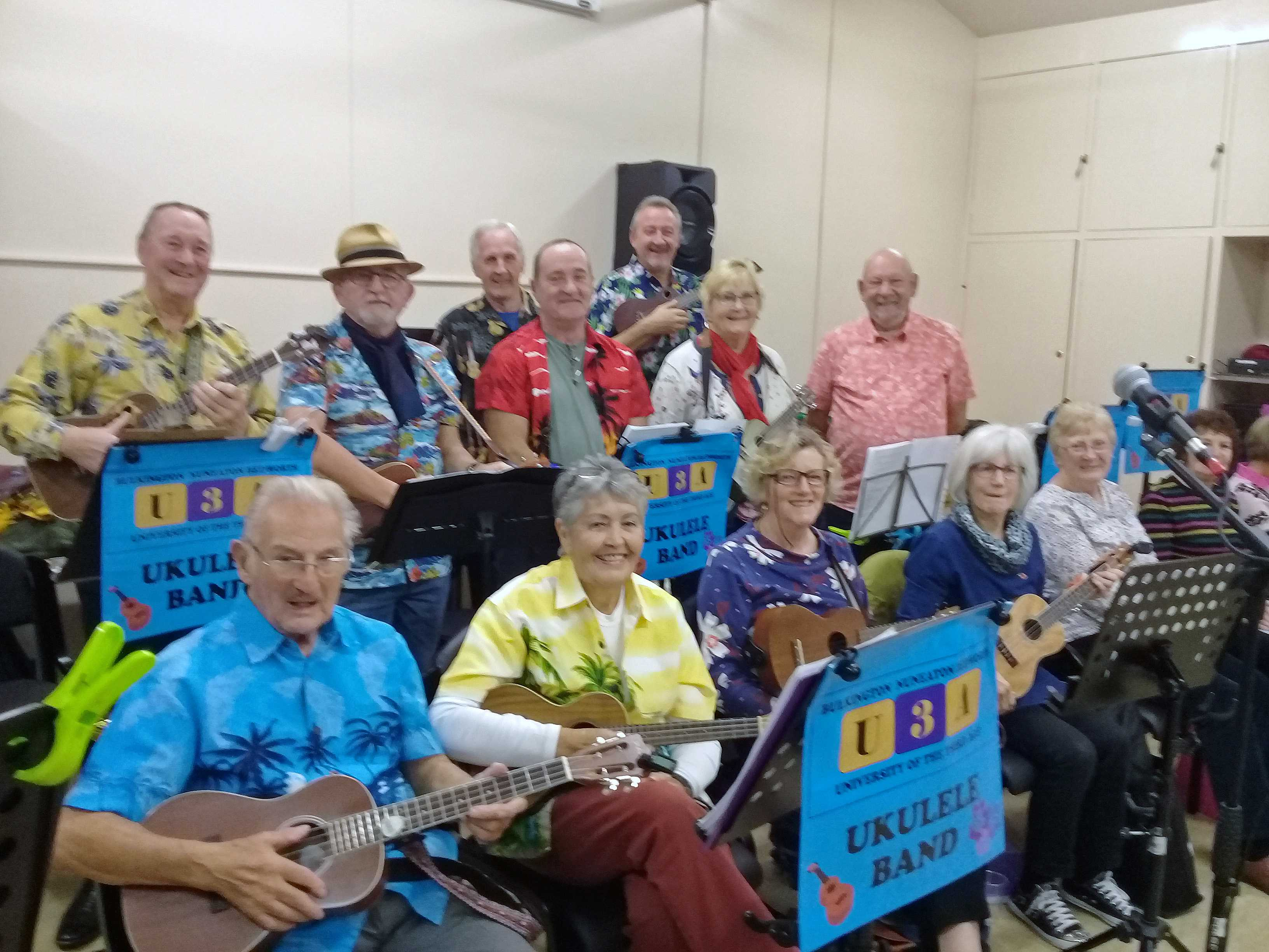 The Ukulele Band