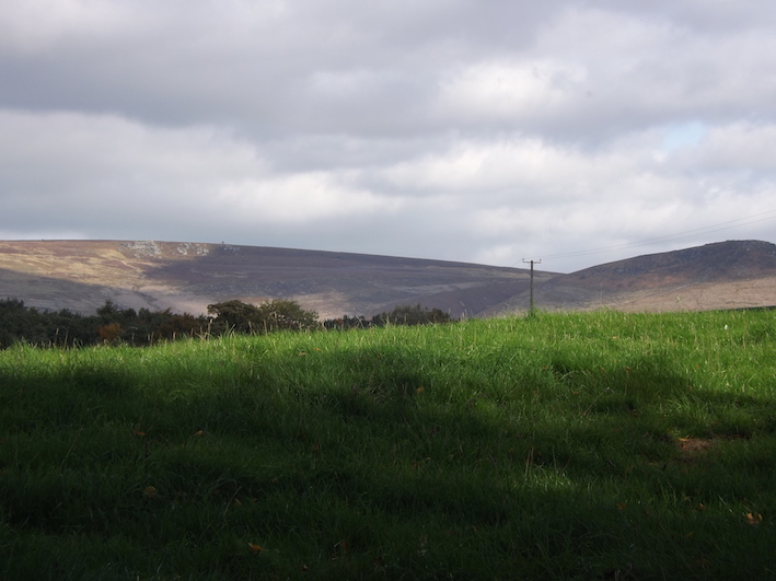 The view from Skipton woods