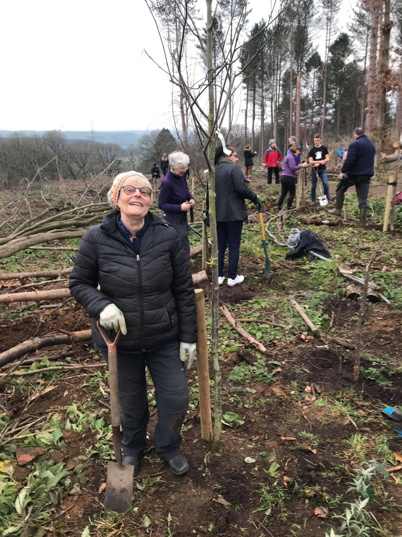 Tree planting at St. Ives