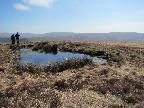 Pond at Trig point