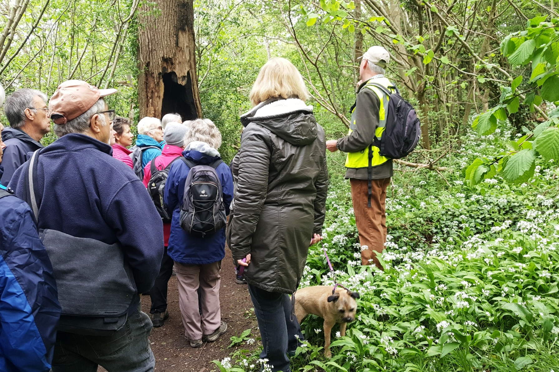 Guided tour of a nature reserve