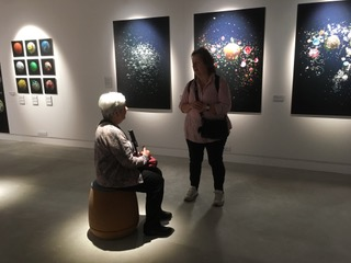 Art on Show - RPS exhibition