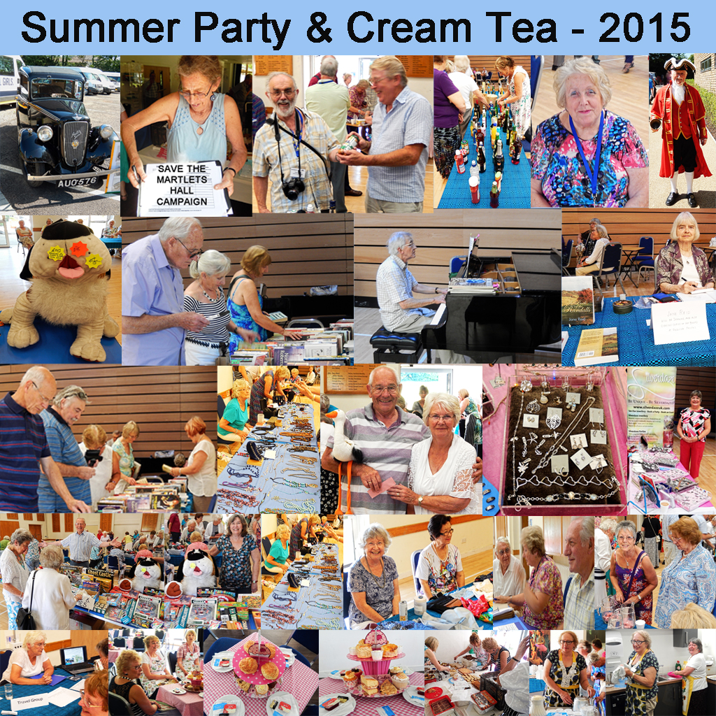 2015 Summer Party