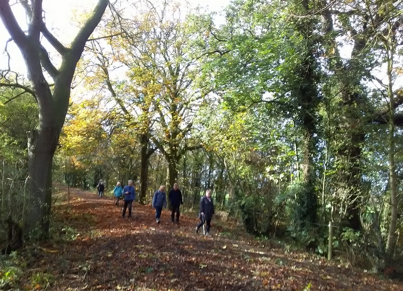 Walkers in the autumn sunshine 25.10.17