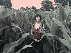 Elaine in the maize