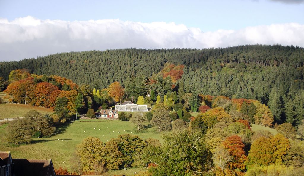 Autumn comes to Cragside & Coquetdale