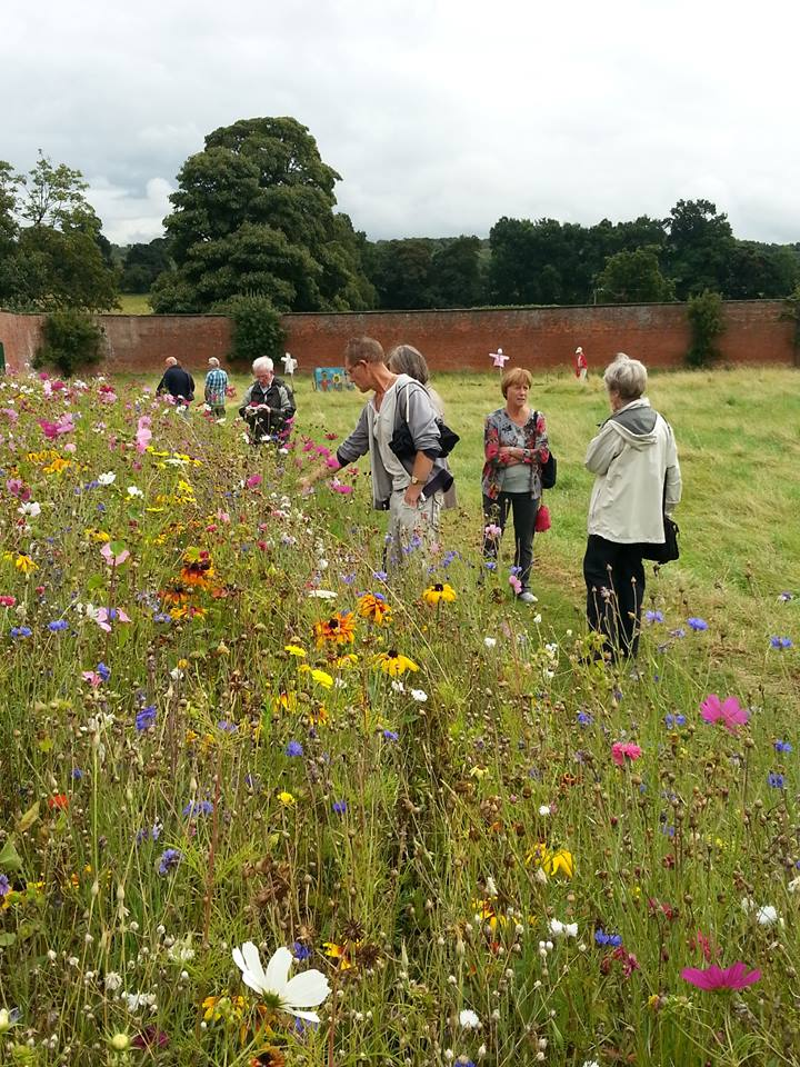Gardening group at Calke Abbey