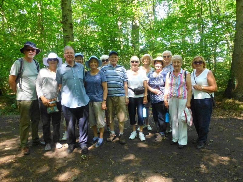 Sandall Beat / Cantley Woods - July 2019