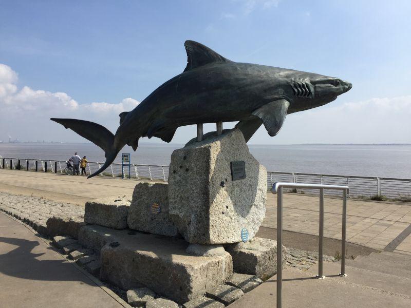 Hull visit: April 2019