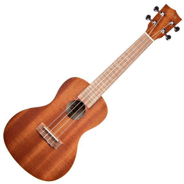 Typical ukulele