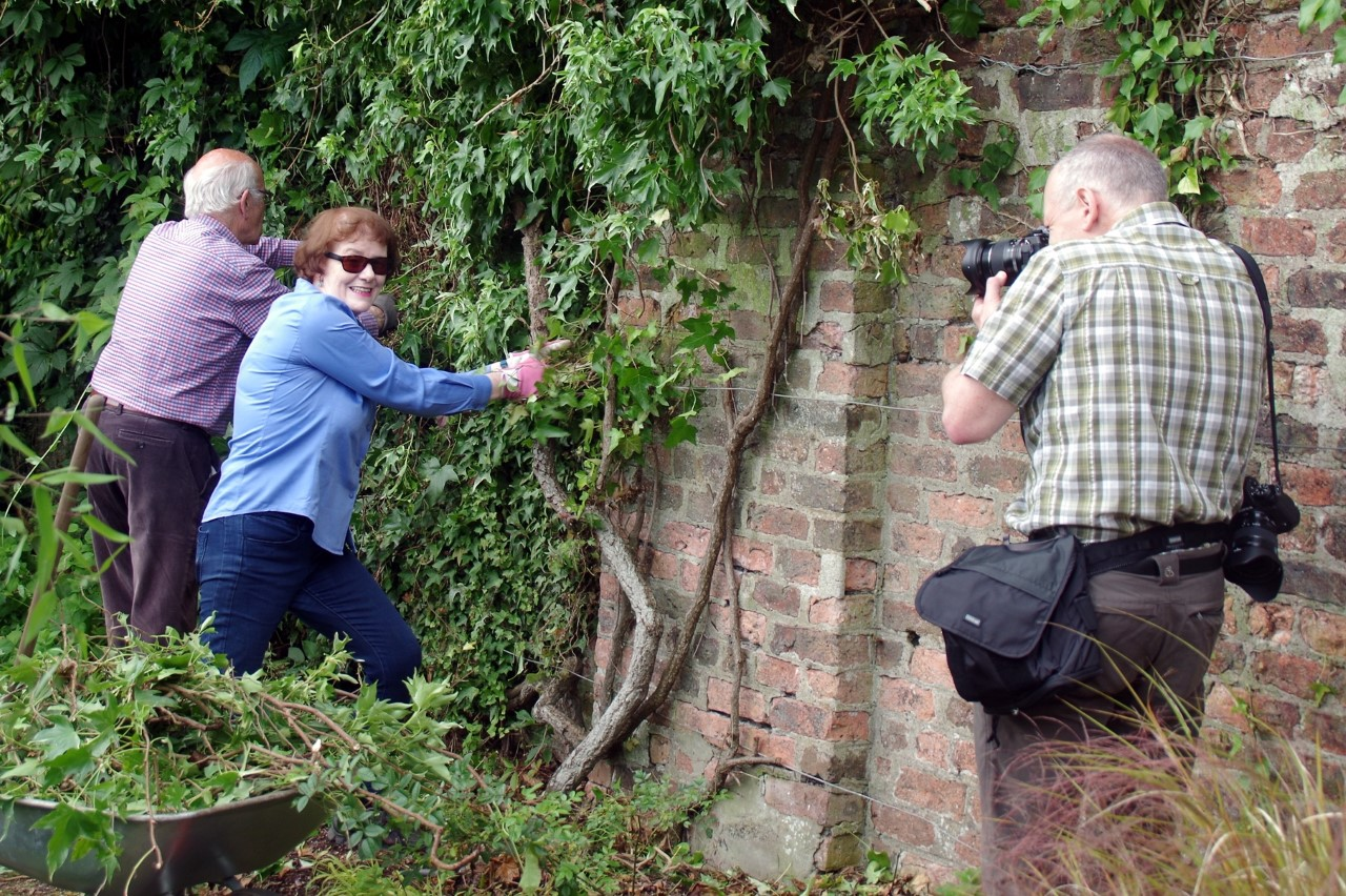 Getting on with the pruning