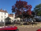 Emsworth Square