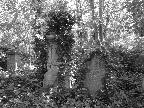 Abney Park - 3 by Pat Brown