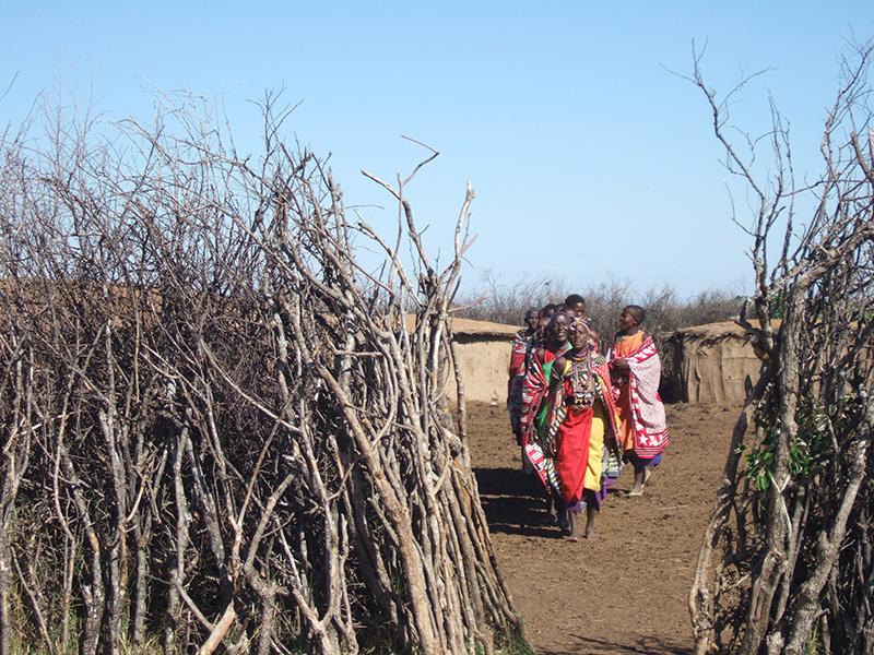 Masai Mara Enclosure
