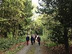 Parlington Walk