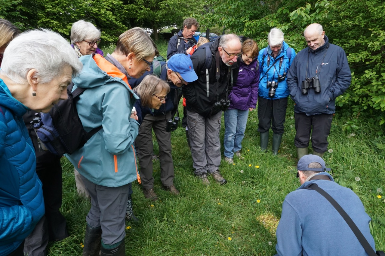 A guided tour of Aylestone Meadows