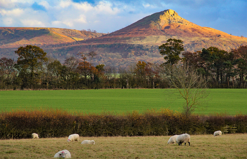 Roseberry Topping from Nunthorpe Church
