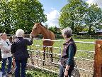 Newmarket Trip- May 2019