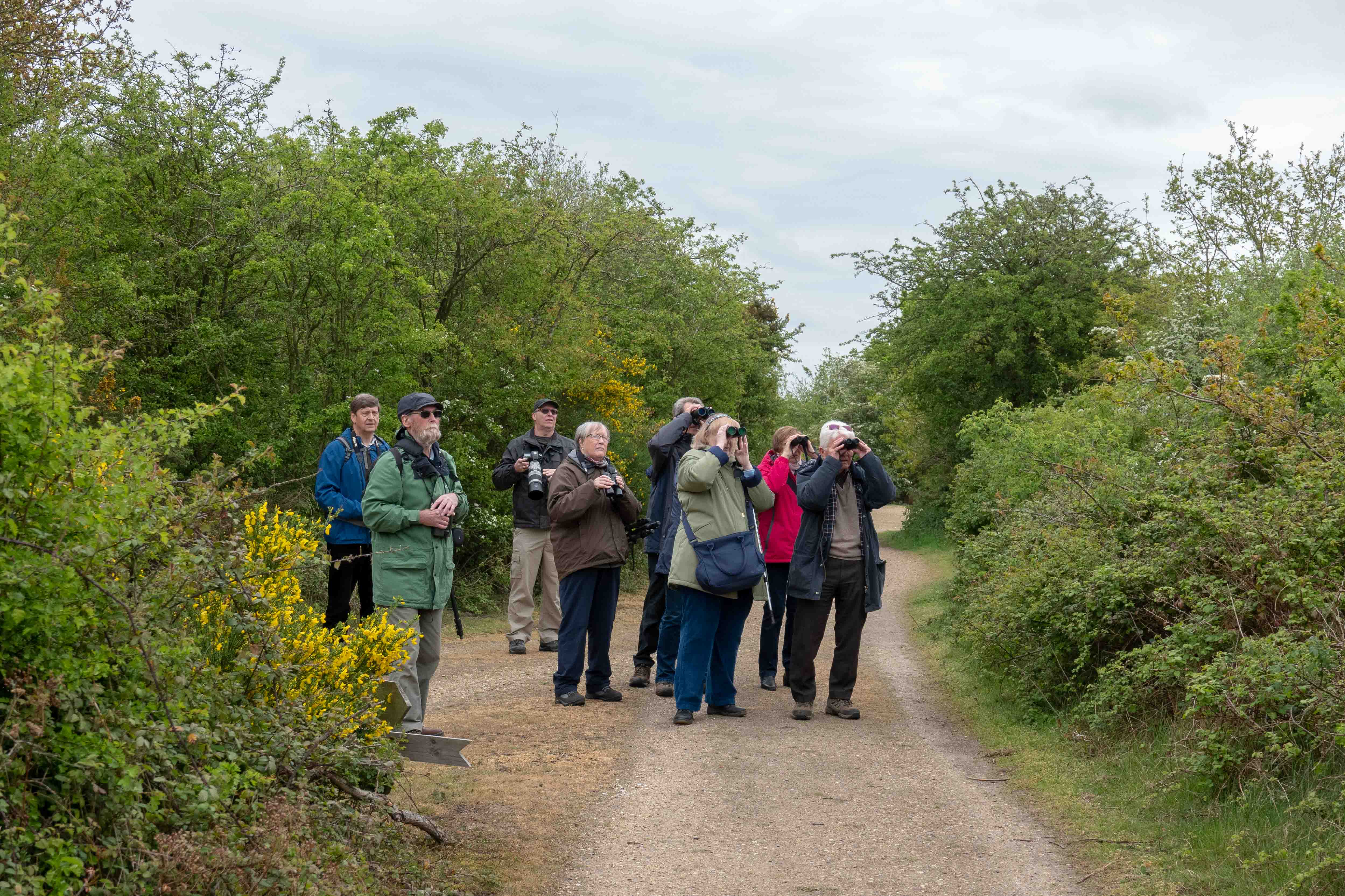 At Fingringhoe Wick May 19