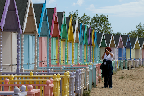 West Mersea beach huts June 15