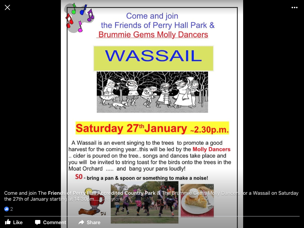 Wassail in a Perry Hall Park