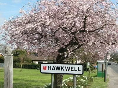 Hawkwell Common in Spring