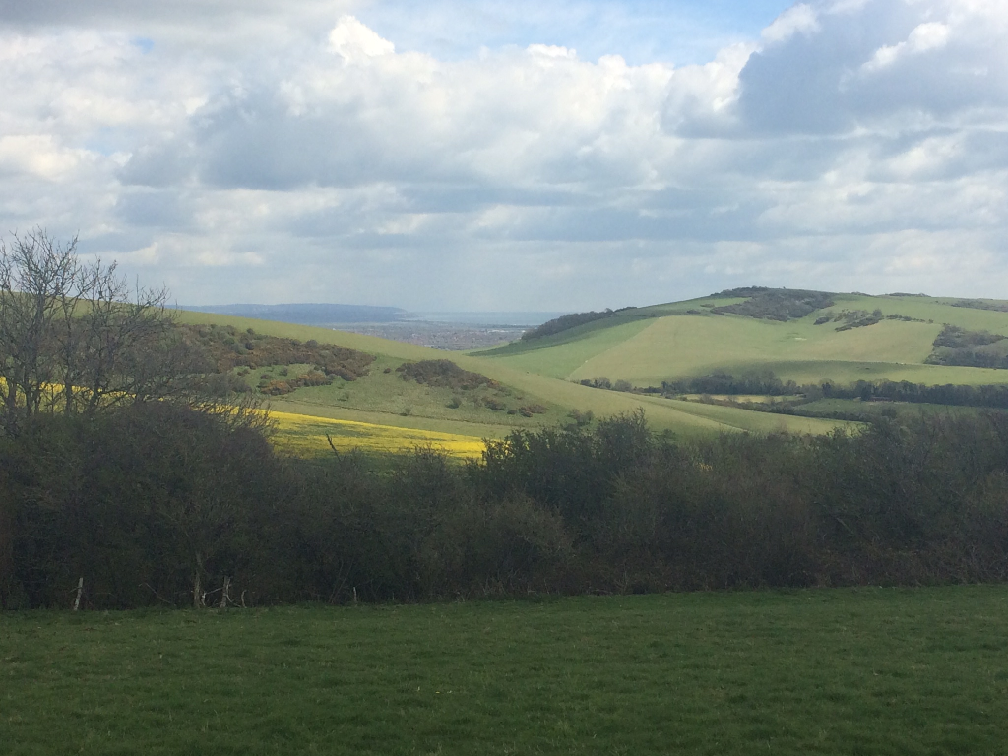 Downland Scenery in April