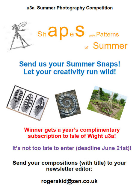Photo Competition Summer 2021