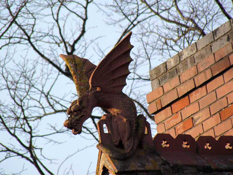The Leicester Wyvern