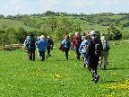 May walk at Gumley