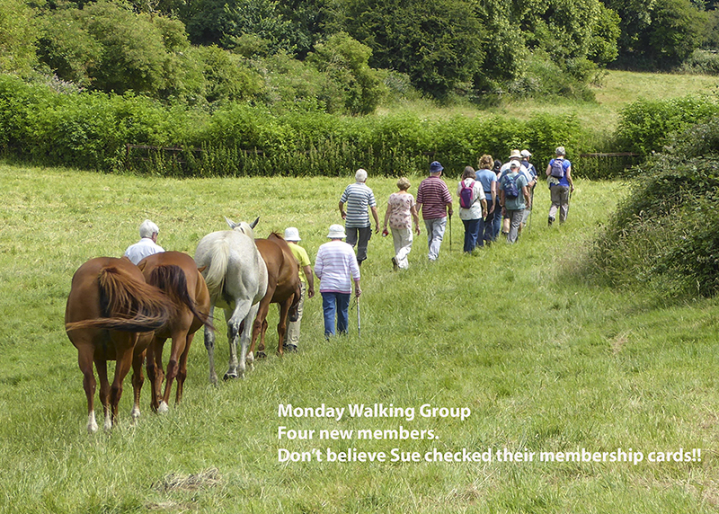 Monday Walkers - New Members