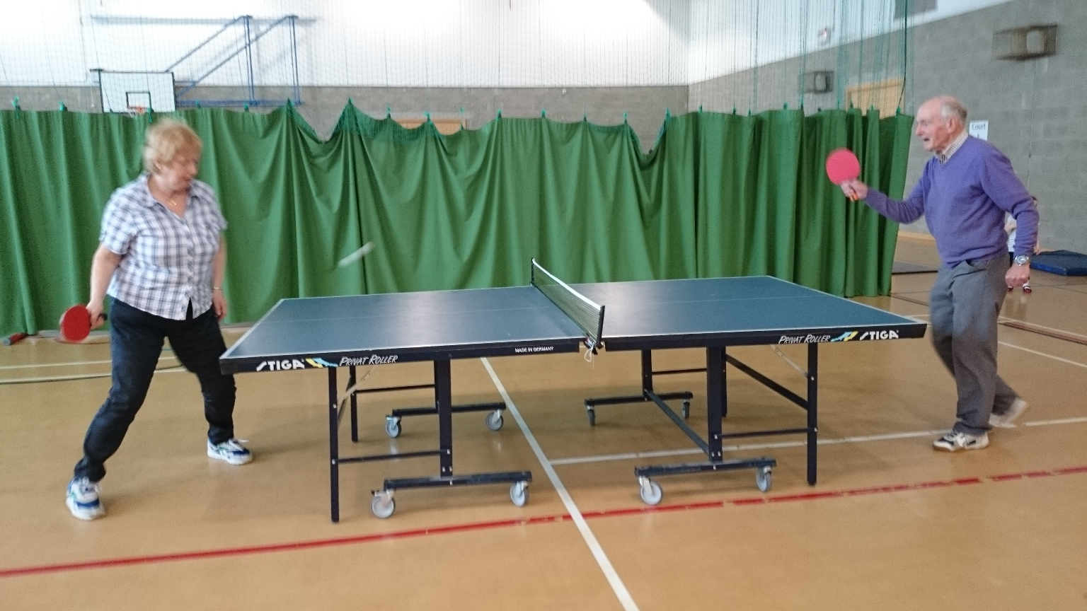 Table Tennis table 2
