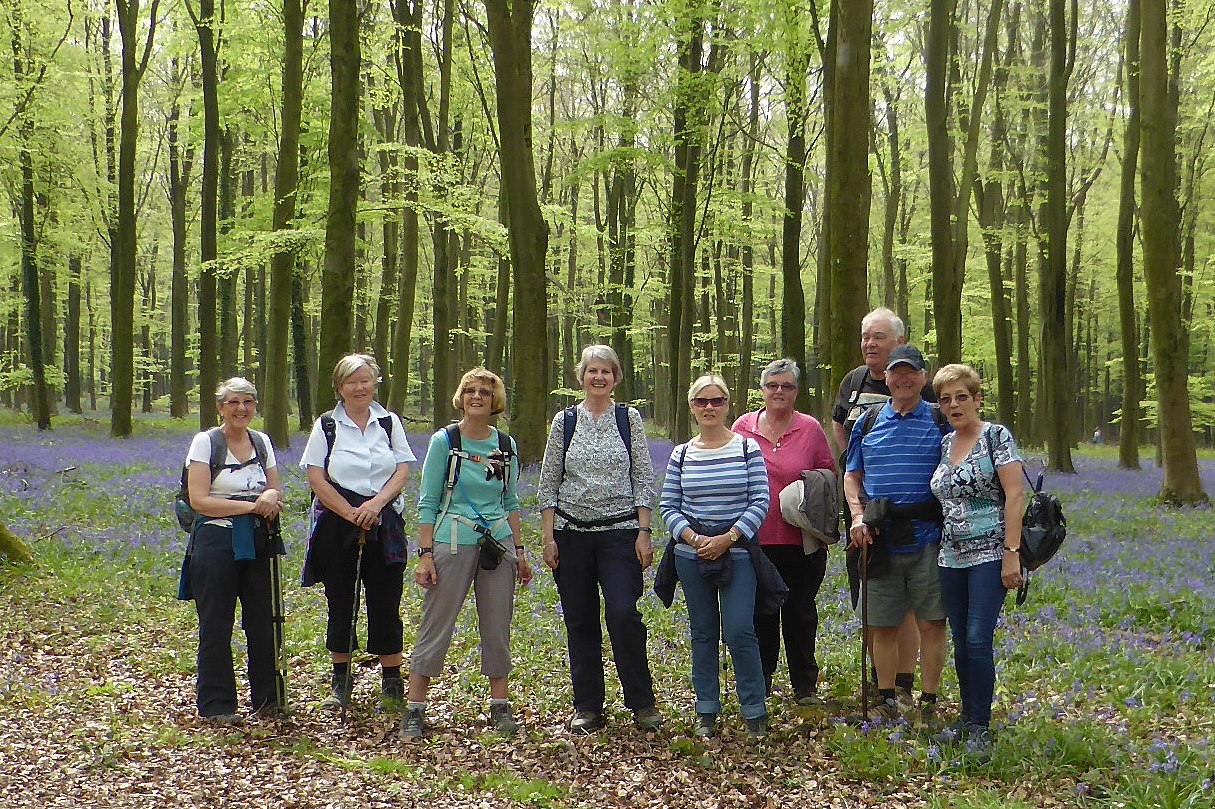 The Group in Patching Woods