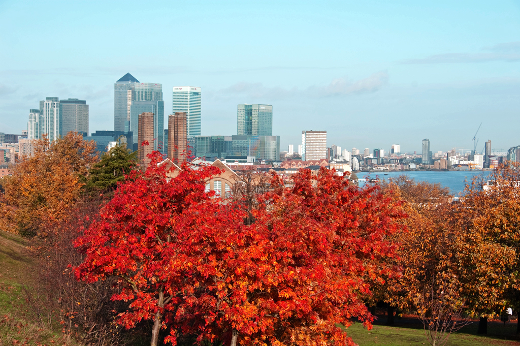 South East London  in Autumn
