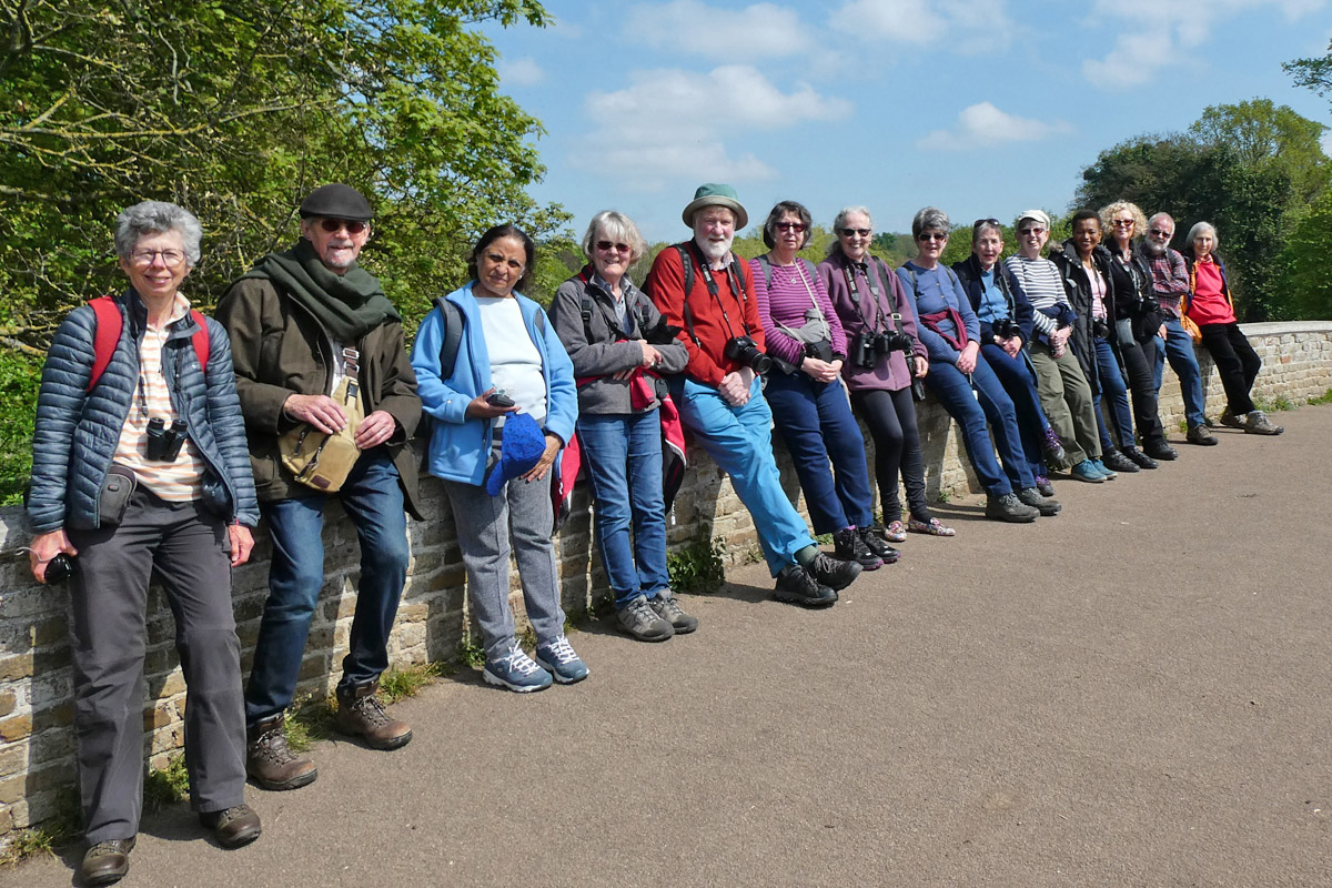 Some of the Stroll Group