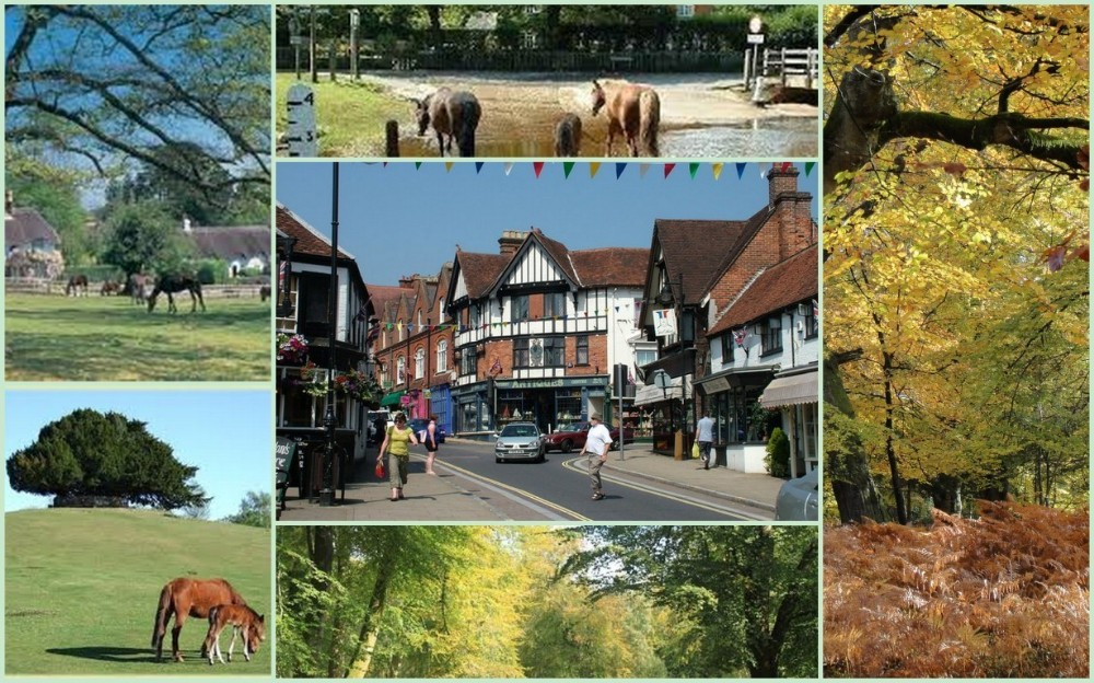 Lyndhurst and District. The New Forest