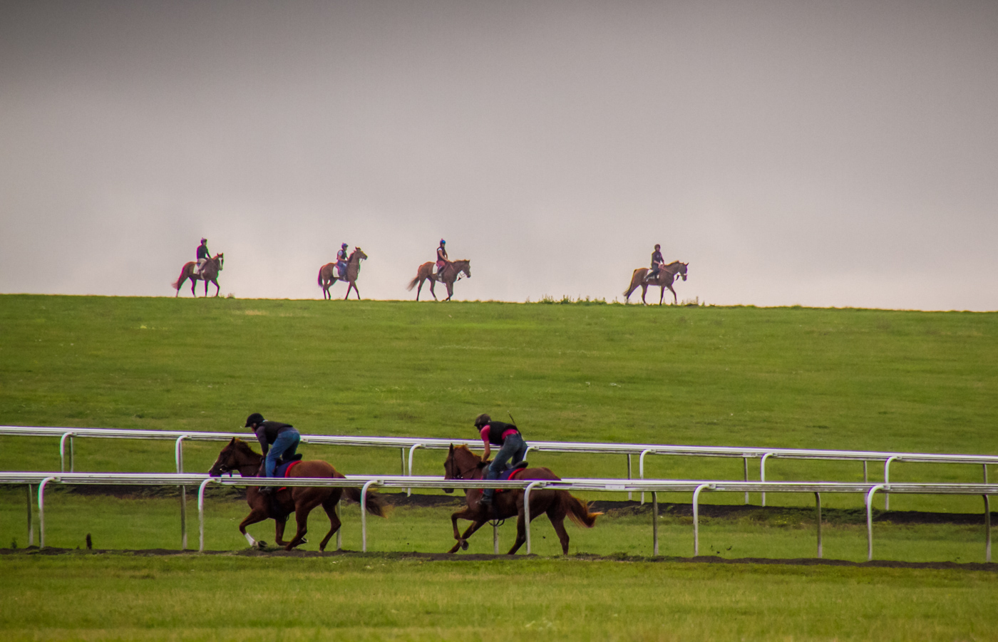 Morning exercise on Newmarket gallops