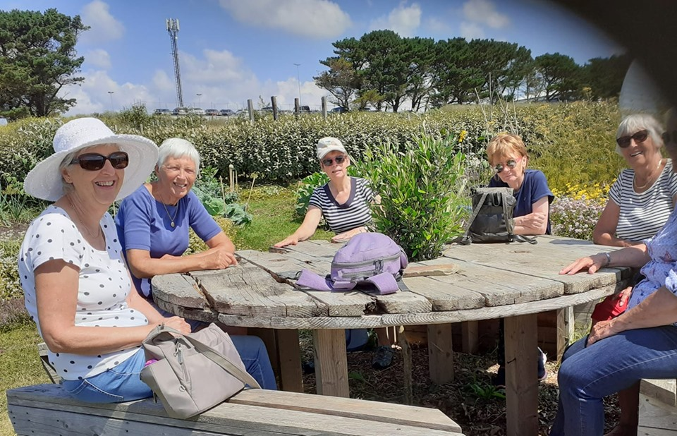 Picnic at Newquay Orchard: July 2019