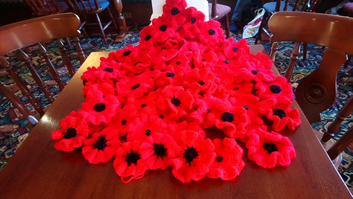 Poppies for the Library Nov 2018