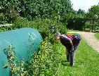 Dinah inspects the composter - Vege