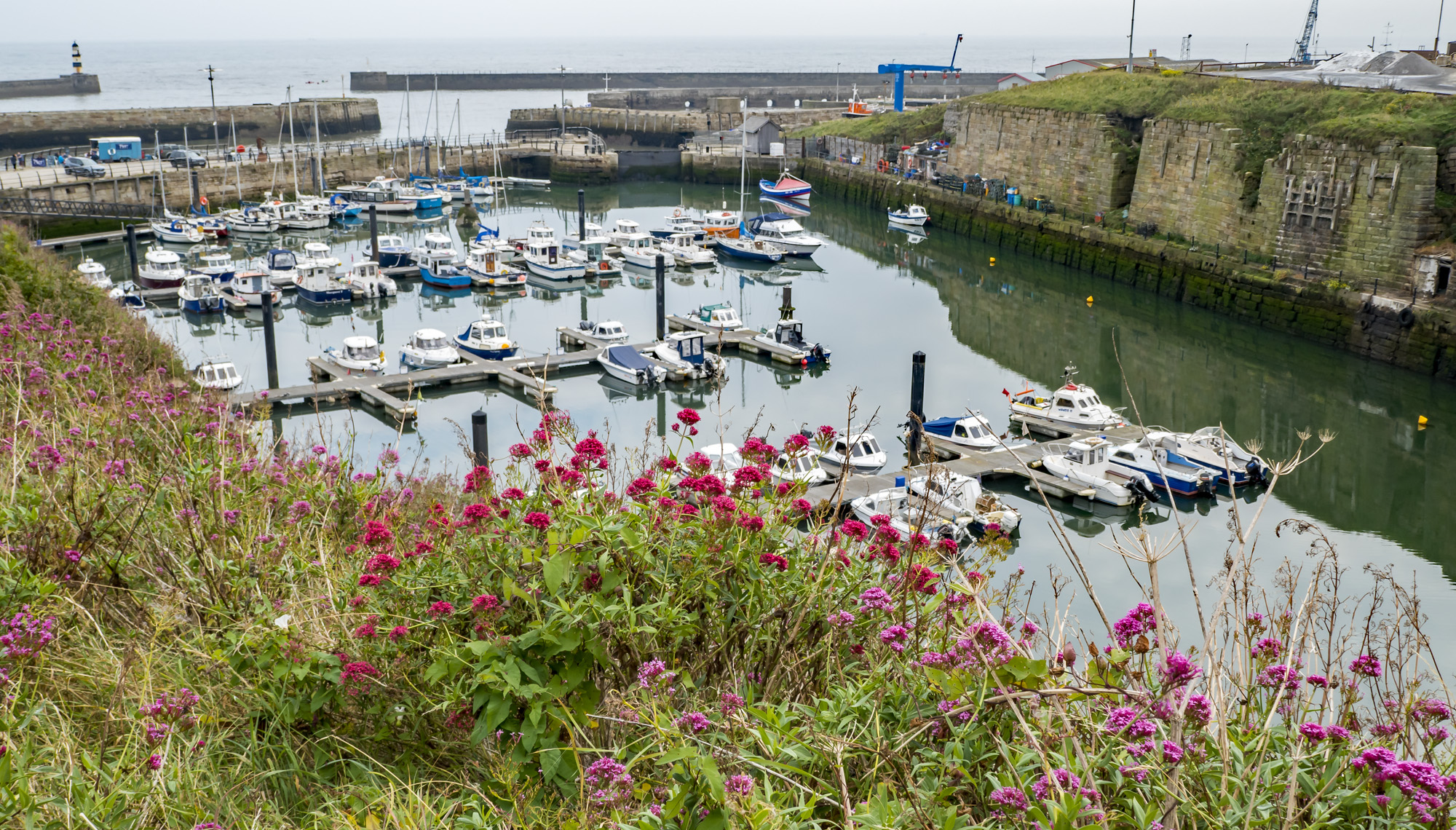 The Harbour, Seaham
