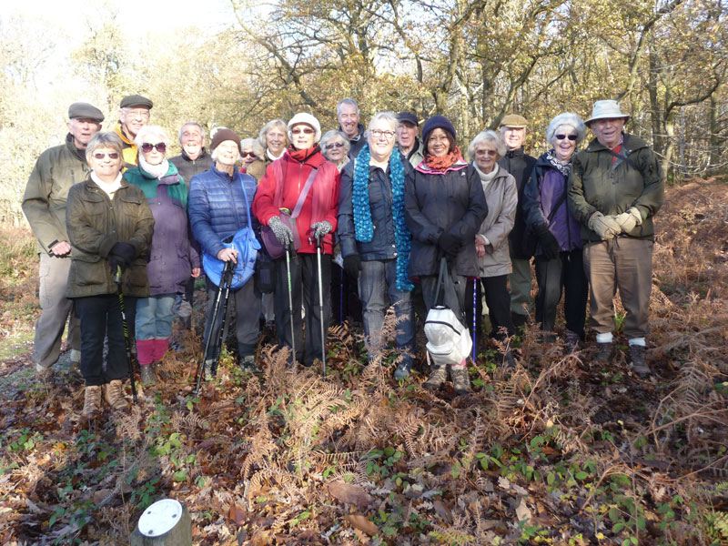 Walking Group 2 at Danbury November 2018