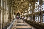Gloucester Cathedral, Cloisters