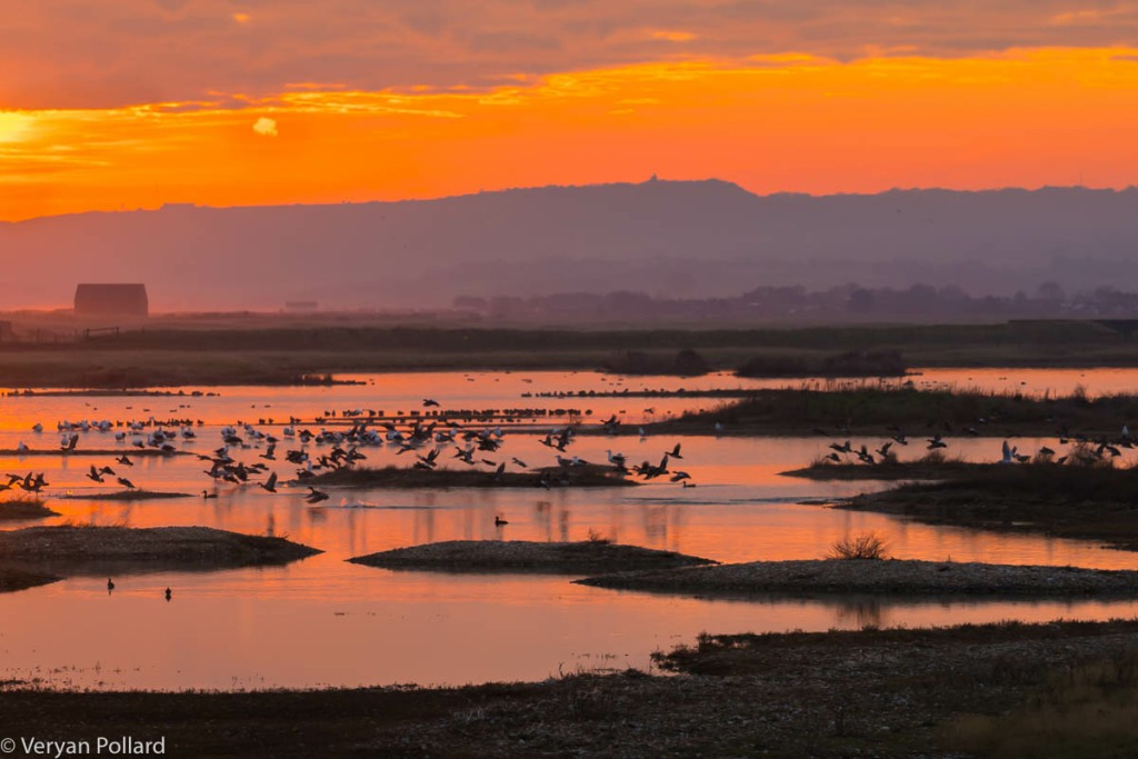 Sunset at Rye Harbour Nature Reserve
