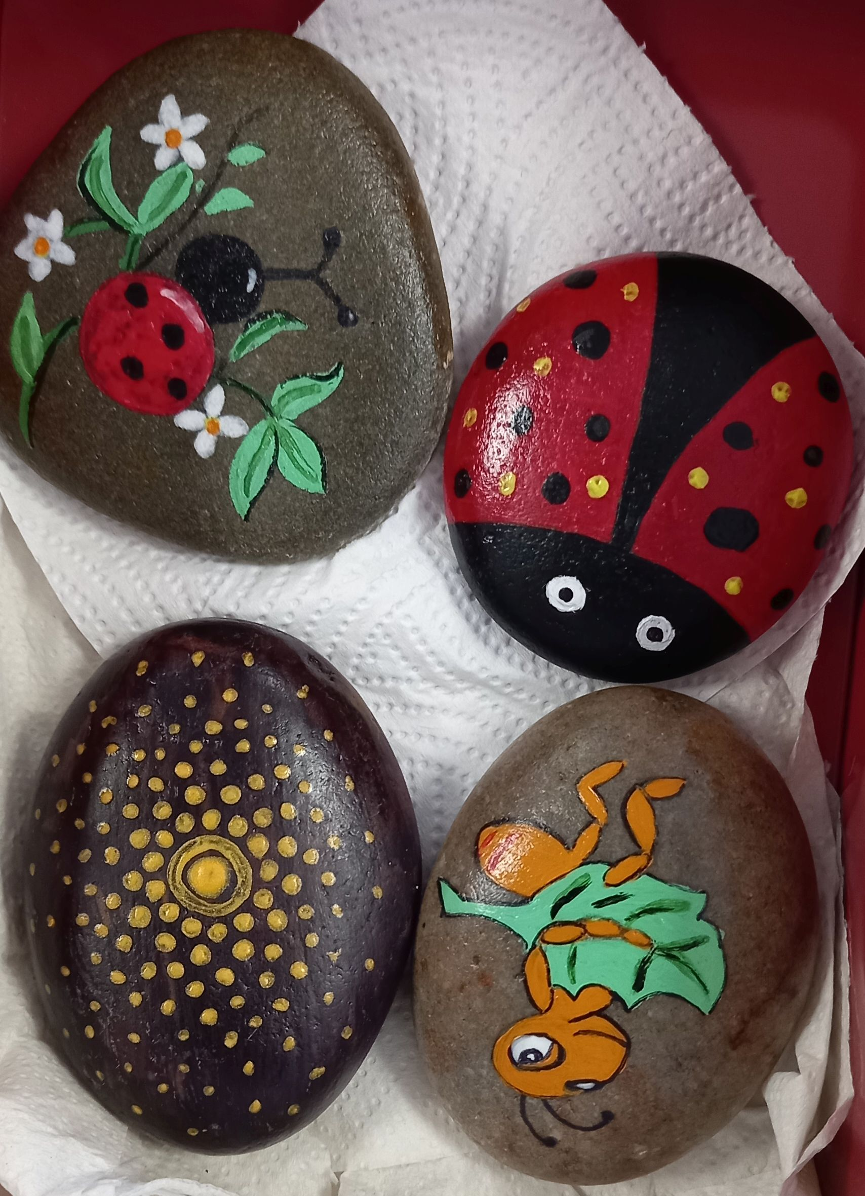 Ladybirds, Cricket and Dots