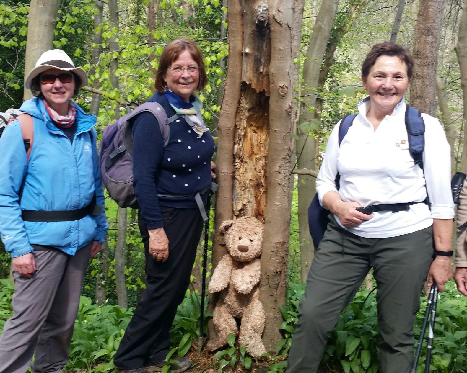Surprise in Roxby Woods