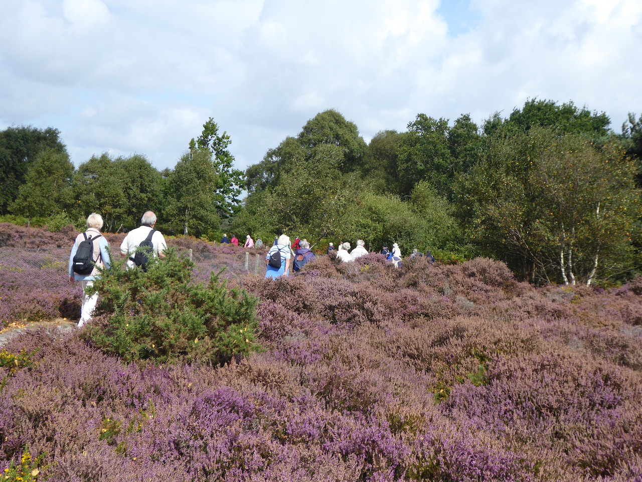 Dunwich Heath walk: Sept 2017